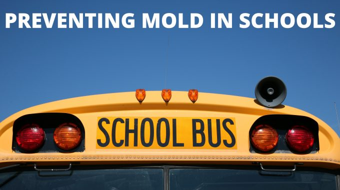 HVAC Preventive Maintenance Can Help Stop Mold Growth In Schools