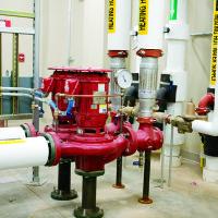 ETWN Pumps 1 800