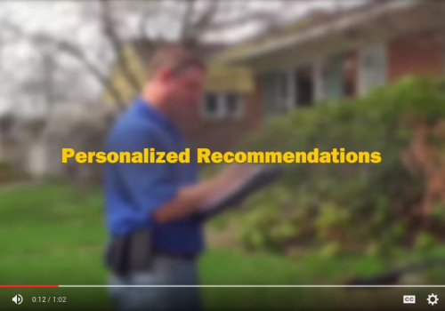 Personalized Recommendations